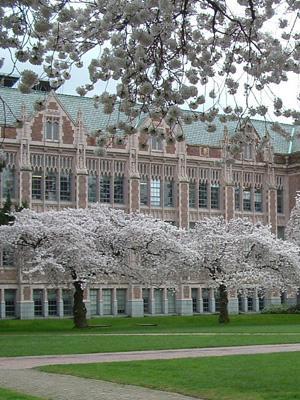 Uniwersytety w USA